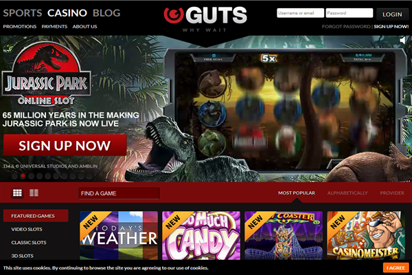 Belgium Online Casinos - The Best Sites for Belgians