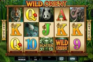 Wild Jackpots Casino Screenshot 4