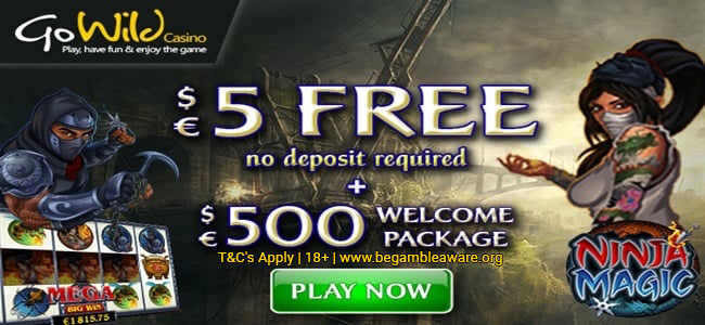 Ninja Magic Slot €5 No Deposit Bonus